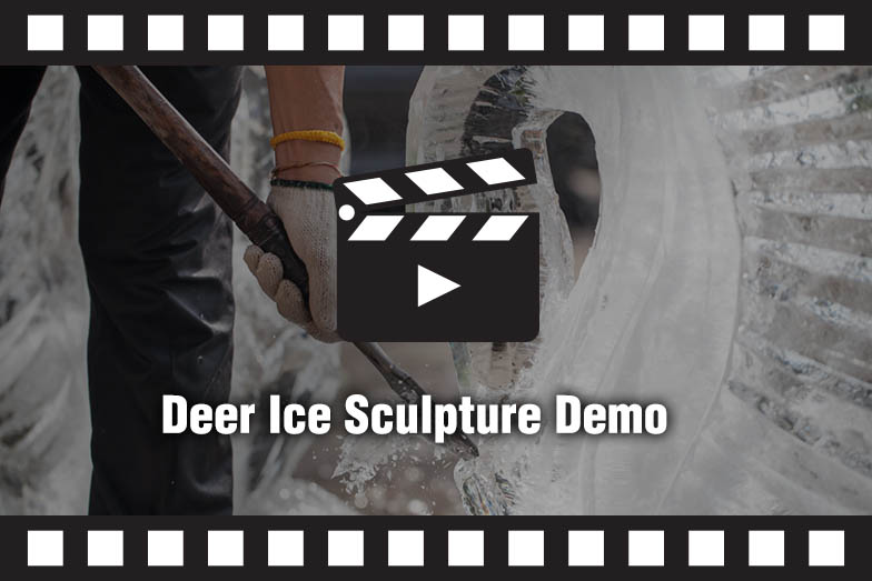 Ice Sculpture Demo Video