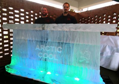 Ice Bar 002 Artic Cool