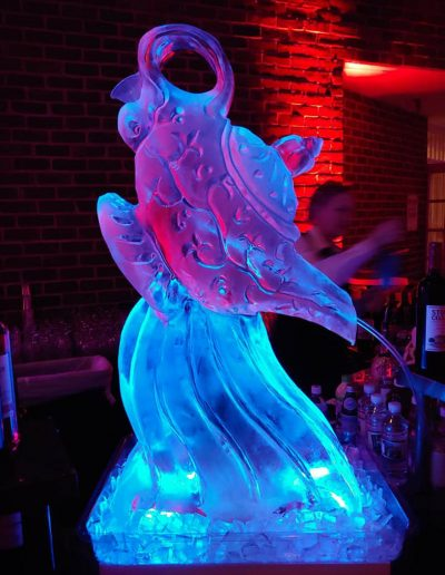 Ice Luge 001 Aladin's Magic Lantern