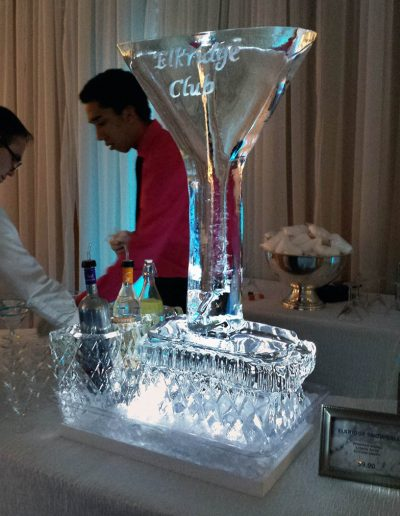 Ice Luge 023 Martini Glass