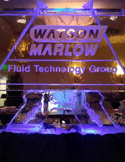 Ice Luge 040 Watson Marlow
