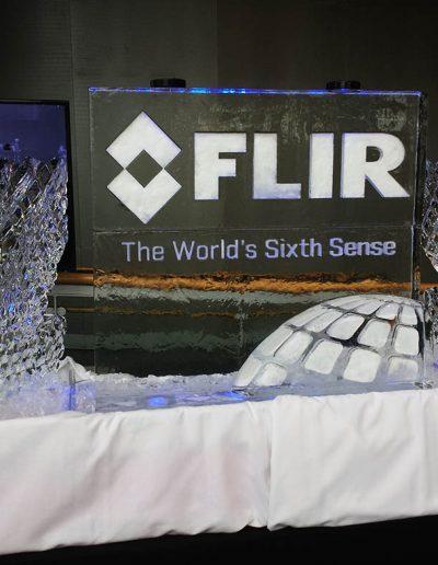 Ice Luge 057 FLIR