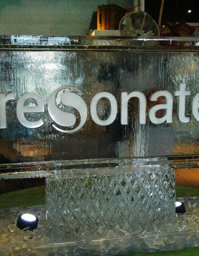 Ice Sculpture Logo 028 Resonate