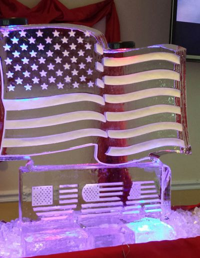 Ice Sculptures For Events 028 USA