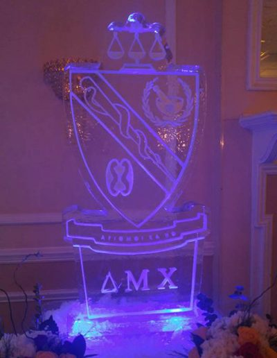 Ice Sculptures For Events 078 Frat Party